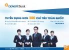 DongA Bank tuyển dụng hơn 300 vị trí trên toàn quốc